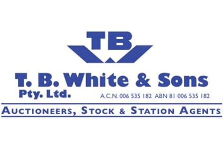 logo-tb-white
